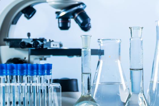 L'importanza di un'elevata biodisponibilità