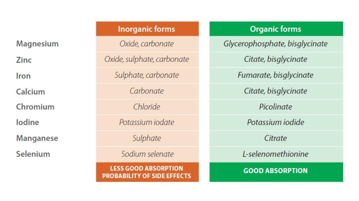 Forme inorganiche contro forme organiche